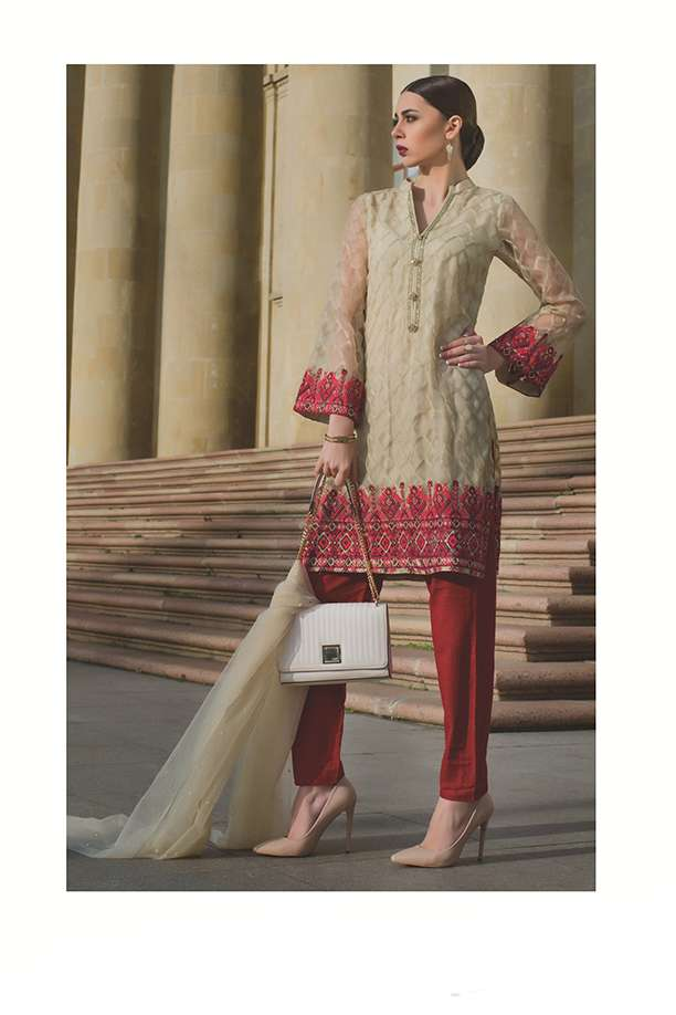 Areeba Saleem Embroidered Organza Unstitched 2 Piece Suit AS17C 03