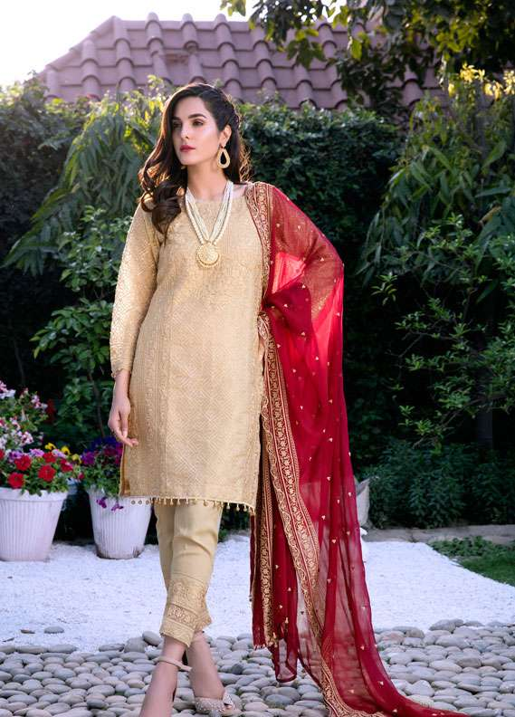 Areeba Saleem Embroidered Cotton Net  Unstitched 2 Piece Suit AS17C 04