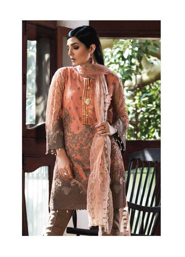 Arisha Chowdary BY ZS Embroidered Organza Unstitched 2 Piece Suit AC17S 02