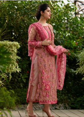 Asifa & Nabeel Embroidered Net Unstitched 3 Piece Suit AN19W 1K SITARE - Winter Collection