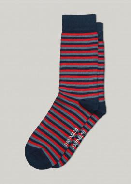 Brumano Cotton Socks BM20CSK Red & Blue Striped Cotton Socks