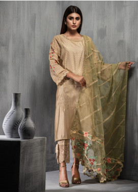 Dhanak Embroidered Cotton Net Stitched 2 Piece Suit DA-1094 Beige