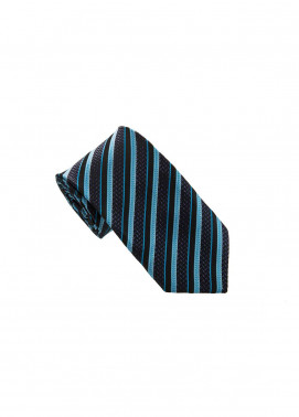 The Gentlemen's Club Blue Striped Silk Tie for Men