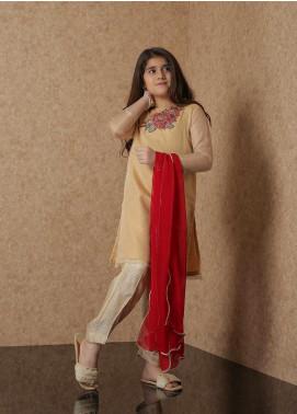 Nargis Shaheen Organza Luxury 2 Piece Suit for Girls -  NSK-029