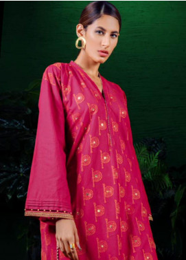 Orient Textile Embroidered Khaddar Unstitched Kurties OT19-W2 187 A - Winter Collection