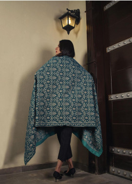 Royal Gallery Embroidered Velvet  Shawl ROG19S 8 Sky Blue - Winter Luxury Collection