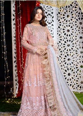 Shibori Embroidered Net Stitched 2 Piece Suit FW02