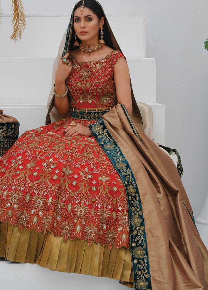 Mah-e-Meer by Anamta Embroidered Net Unstitched 3 Piece Suit ANT20MM S-8 ANARKALI - Luxury Collection