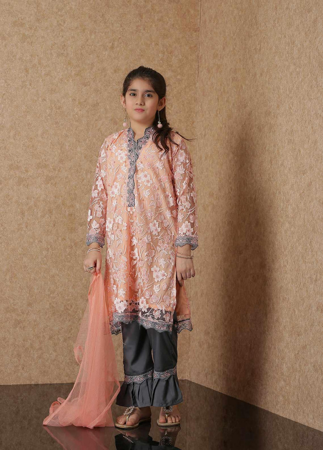 Nargis Shaheen Broschia Net Luxury 2 Piece Suit for Girls -  NSK-023