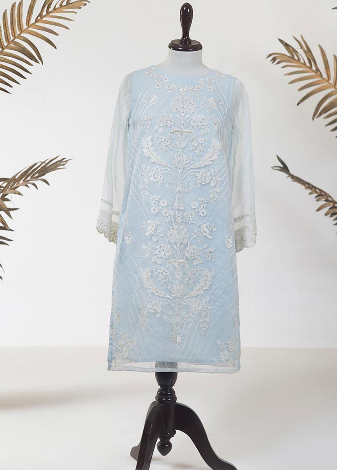 Dhanak Embroidered Organza Stitched Kurti DA-1200 SKY BLUE